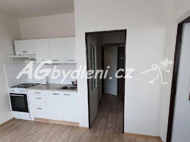 Pronájem 1+1, Plzeň - Žlutická, 9500 Kč, 39 m2