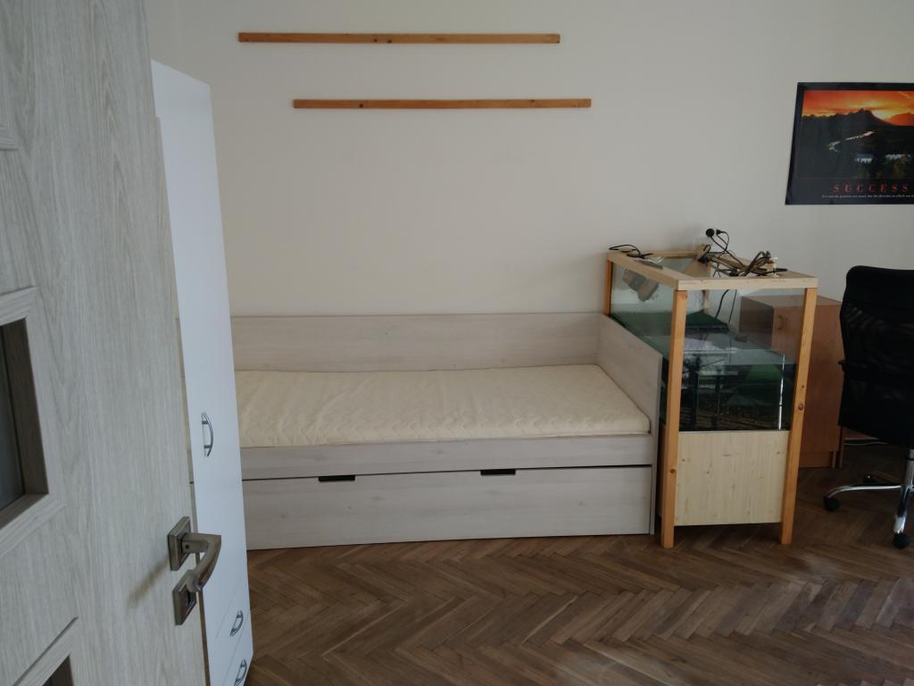 Byt 1+1 na pronájem, Pardubice