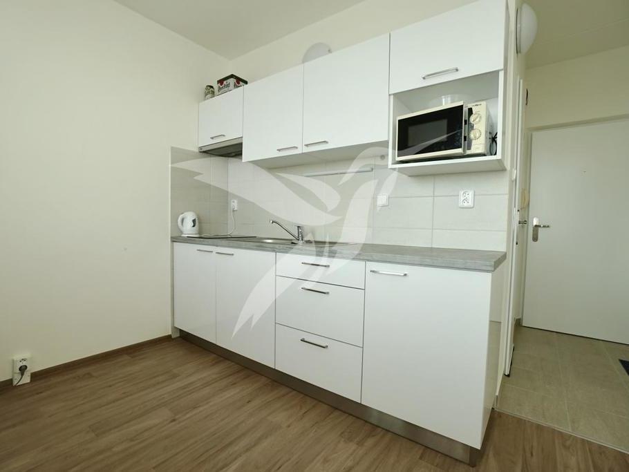 Pronájem 1+1, Plzeň - Elišky Krásnohorské, 8500